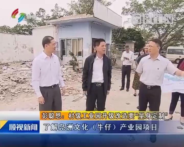 """彭聪恩:村级工业园升级改造要""""量身定制"""""""