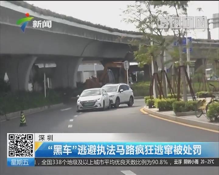 """深圳:""""黑车""""逃避执法马路疯狂逃窜被处罚"""