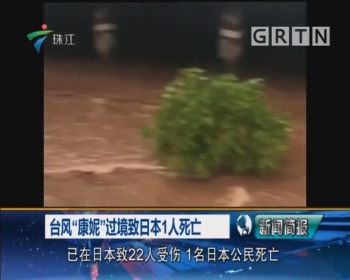 """台风""""康妮""""过境致日本1人死亡"""