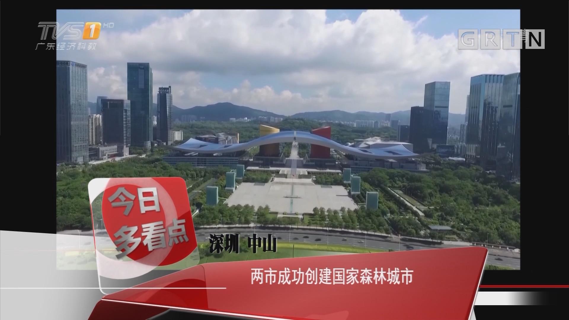 深圳 中山:两市成功创建国家森林城市