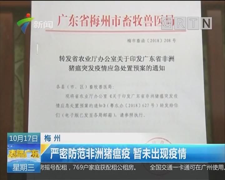 梅州:严密防范非洲猪瘟疫 暂未岀现疫情