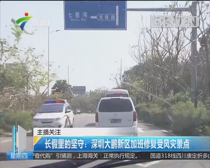 长假里的坚守:深圳大鹏新区加班修复受风灾景点