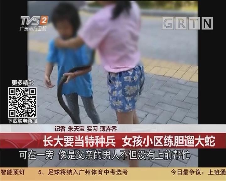 东莞厚街:长大要当特种兵 女孩小区练胆遛大蛇