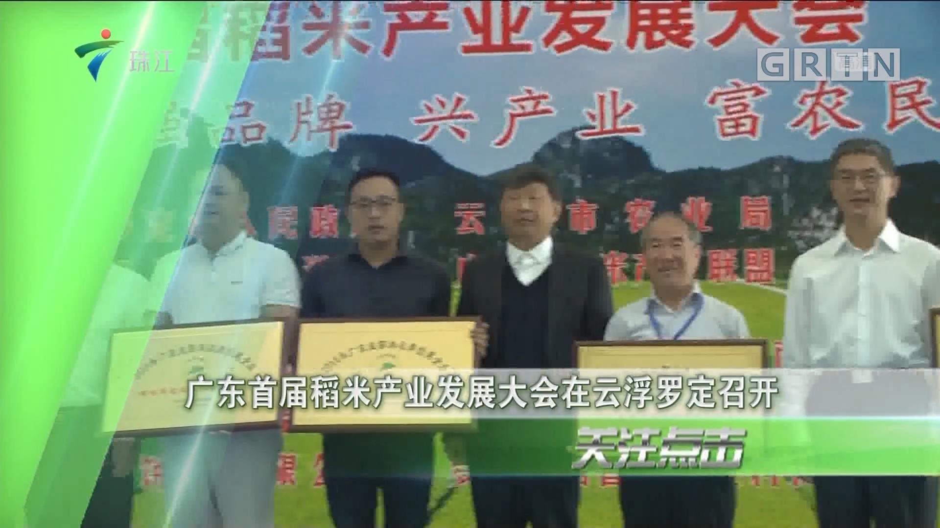 广东首届稻米产业发展大会在云浮罗定召开