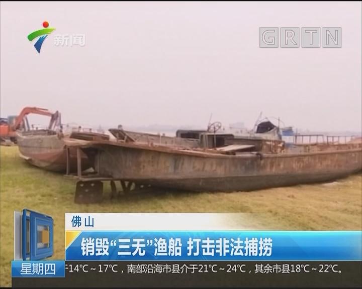 """佛山:销毁""""三无""""渔船 打击非法捕捞"""