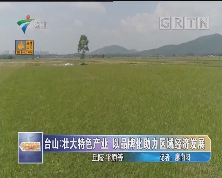 台山:壮大特色产业 以品牌化助力区域经济发展