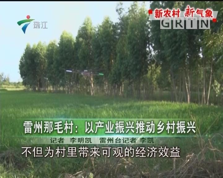 雷州那毛村:以产业振兴推动乡村振兴