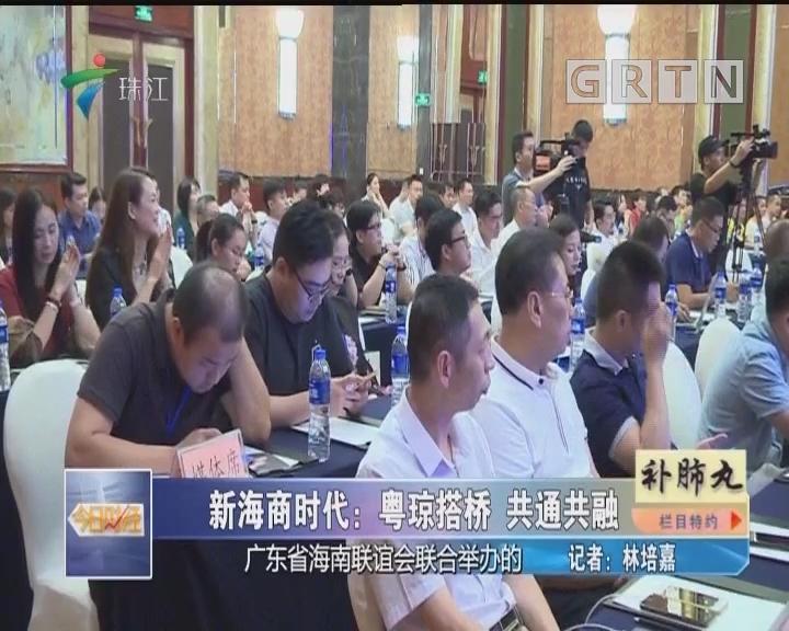 新海商时代:粤琼搭桥 共通共融