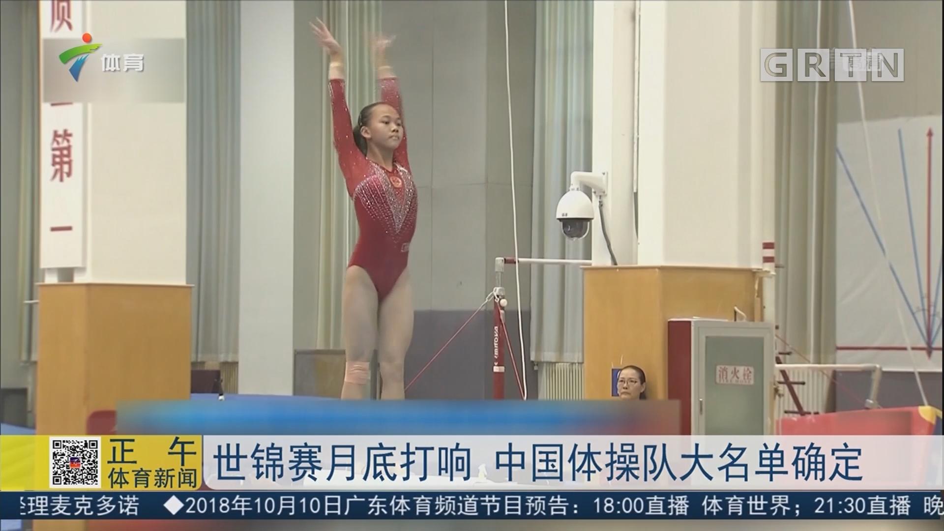 世锦赛月底打响 中国体操队大名单确定