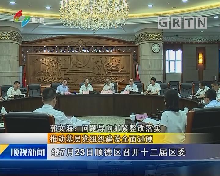 郭文海:问题导向抓紧整改落实 推动基层党组织建设全面过硬