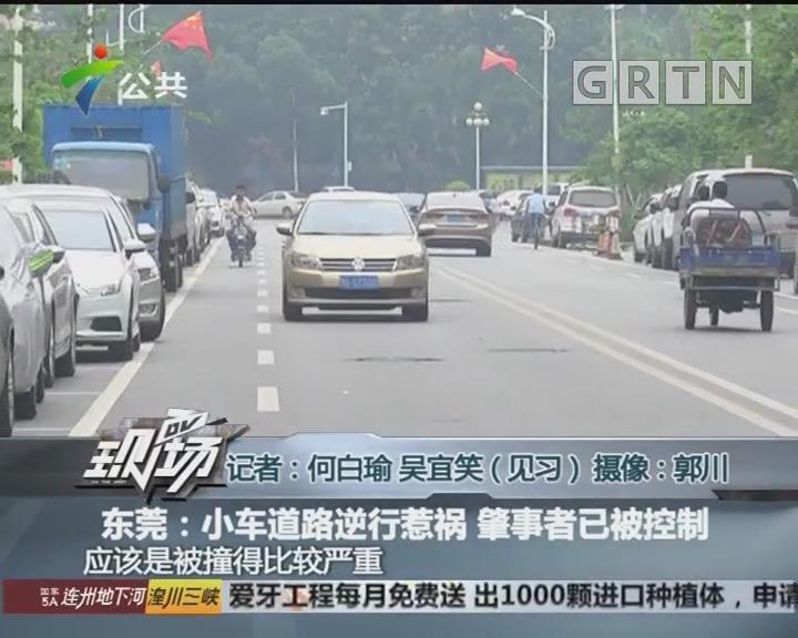 东莞:小车道路逆行惹祸 肇事者已被控制