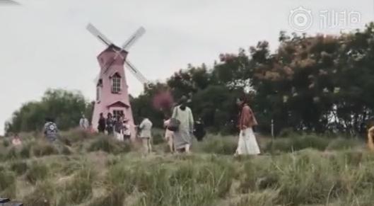 粉红花海被践踏 景区呼吁文明观赏