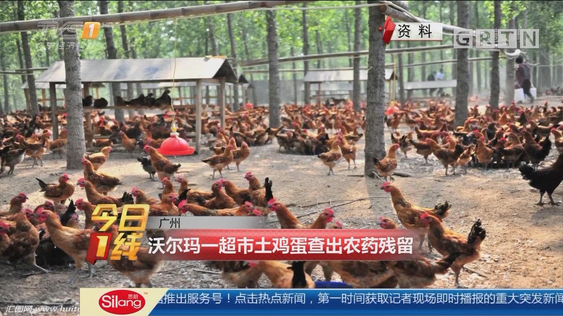 广州:沃尔玛一超市土鸡蛋查出农药残留