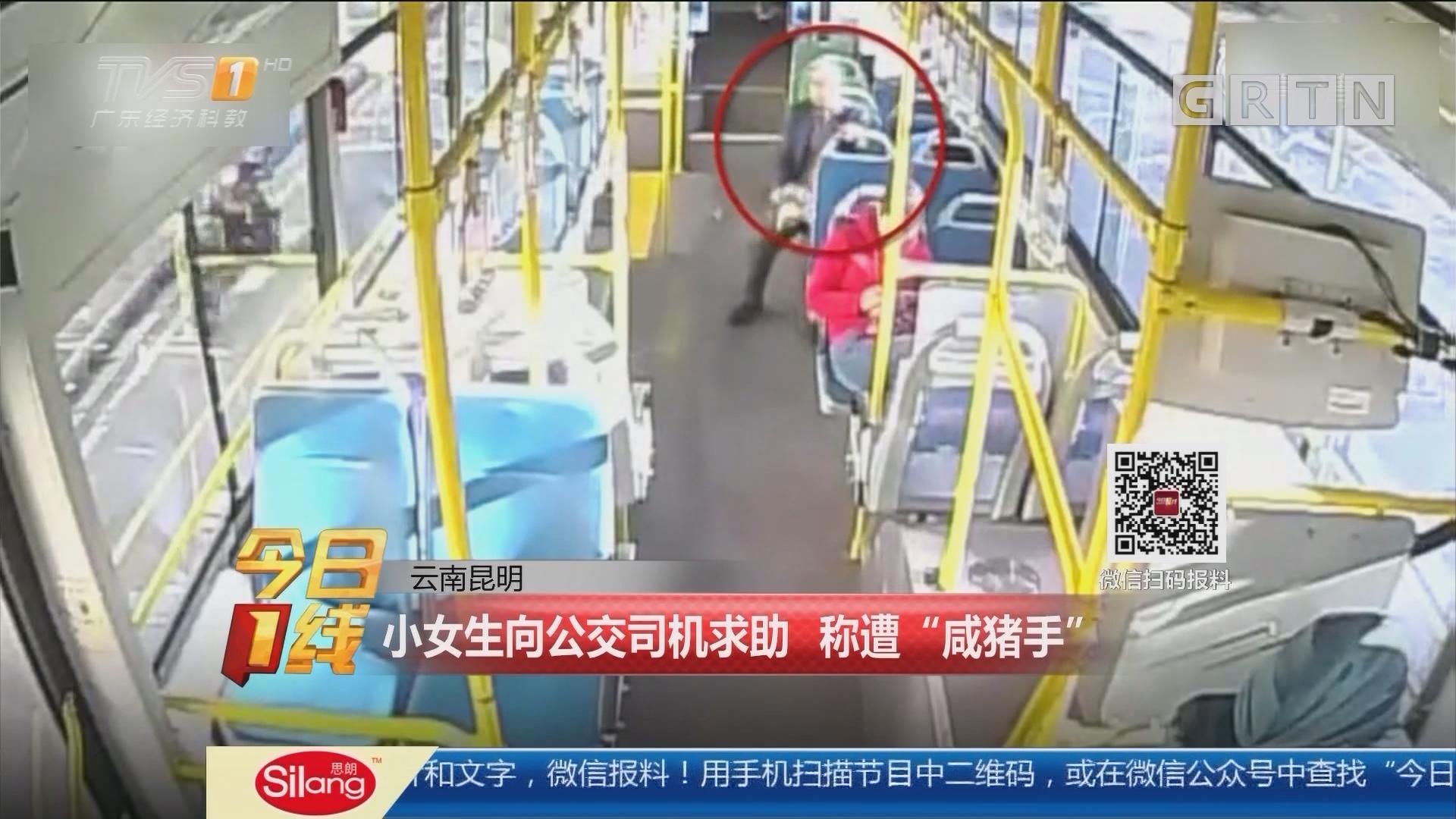 """云南昆明:小女生向公交司机求助 称遭""""咸猪手"""""""