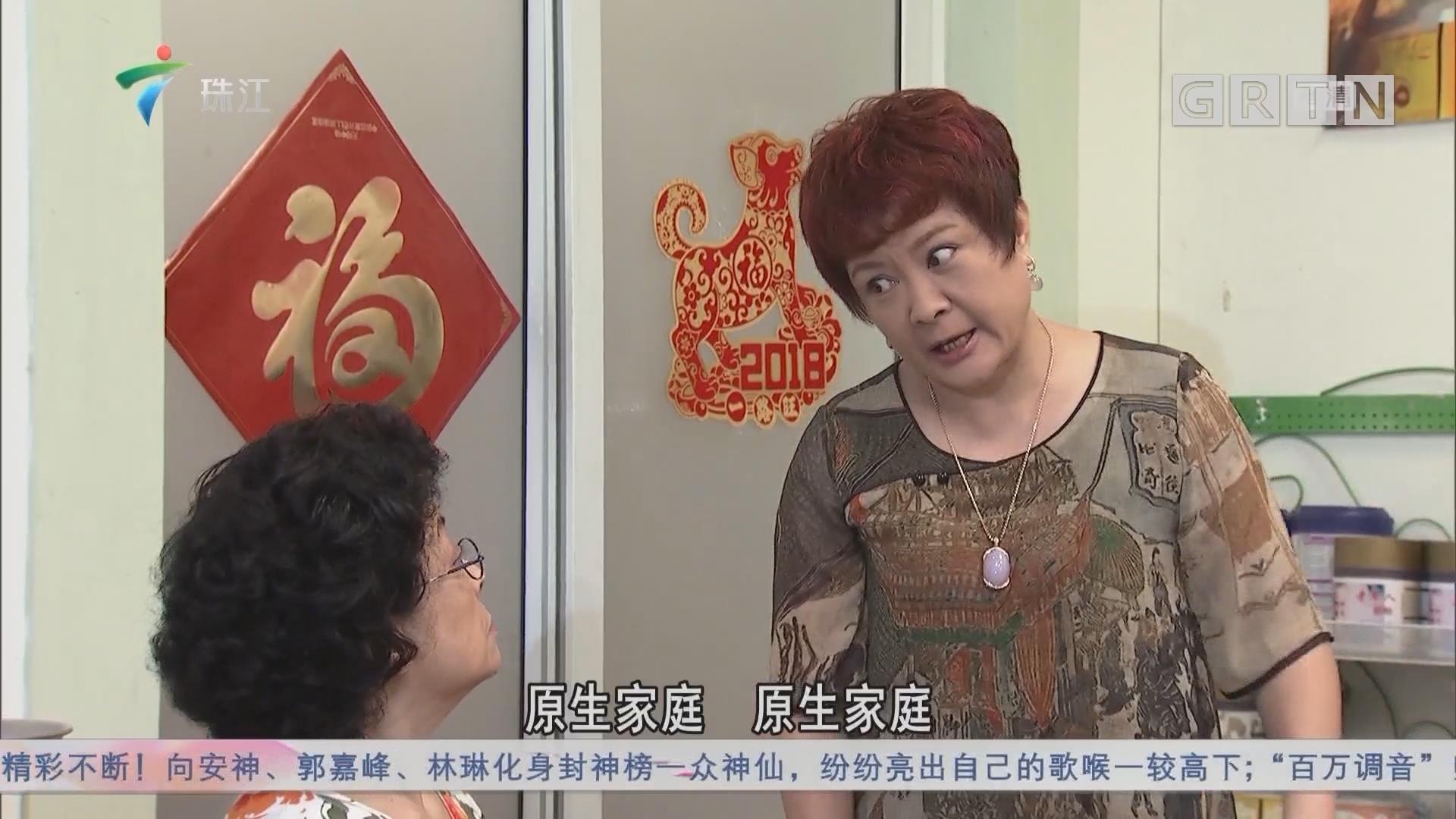 [HD][2018-11-17]外来媳妇本地郎:原生家庭的故事(下)