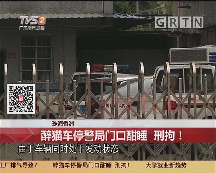 珠海香洲:醉猫车停警局门口酣睡 刑拘!