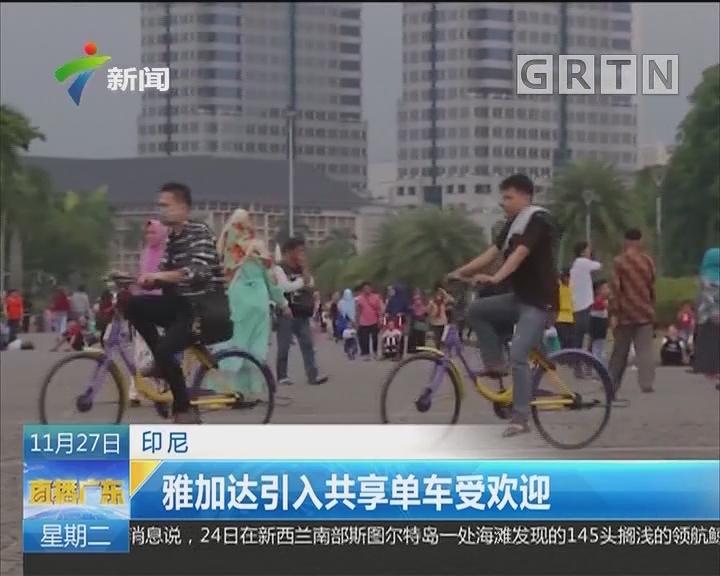 印尼:雅加达引入共享单车受欢迎