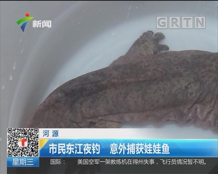 河源:市民东江夜钓 意外捕获娃娃鱼