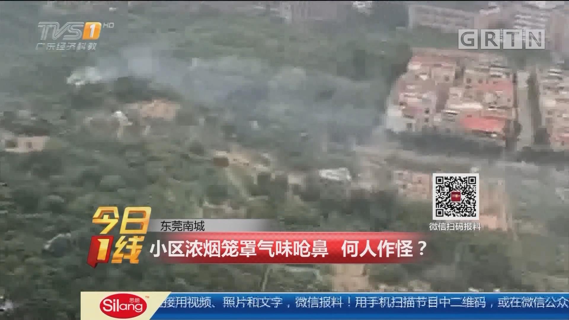 东莞南城:小区浓烟笼罩气味呛鼻 何人作怪?