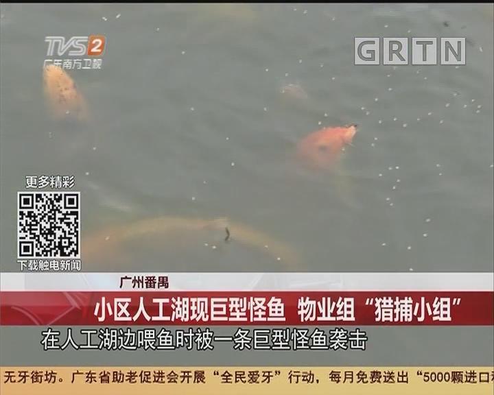 """广州番禺:小区人工湖现巨型怪鱼 物业组""""猎捕小组"""""""