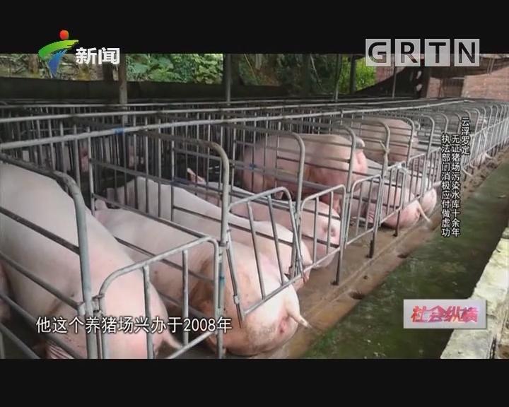 [2018-11-06]社会纵横:云浮罗定 无证猪场污染水库十余年 执法部门消极应付做虚功