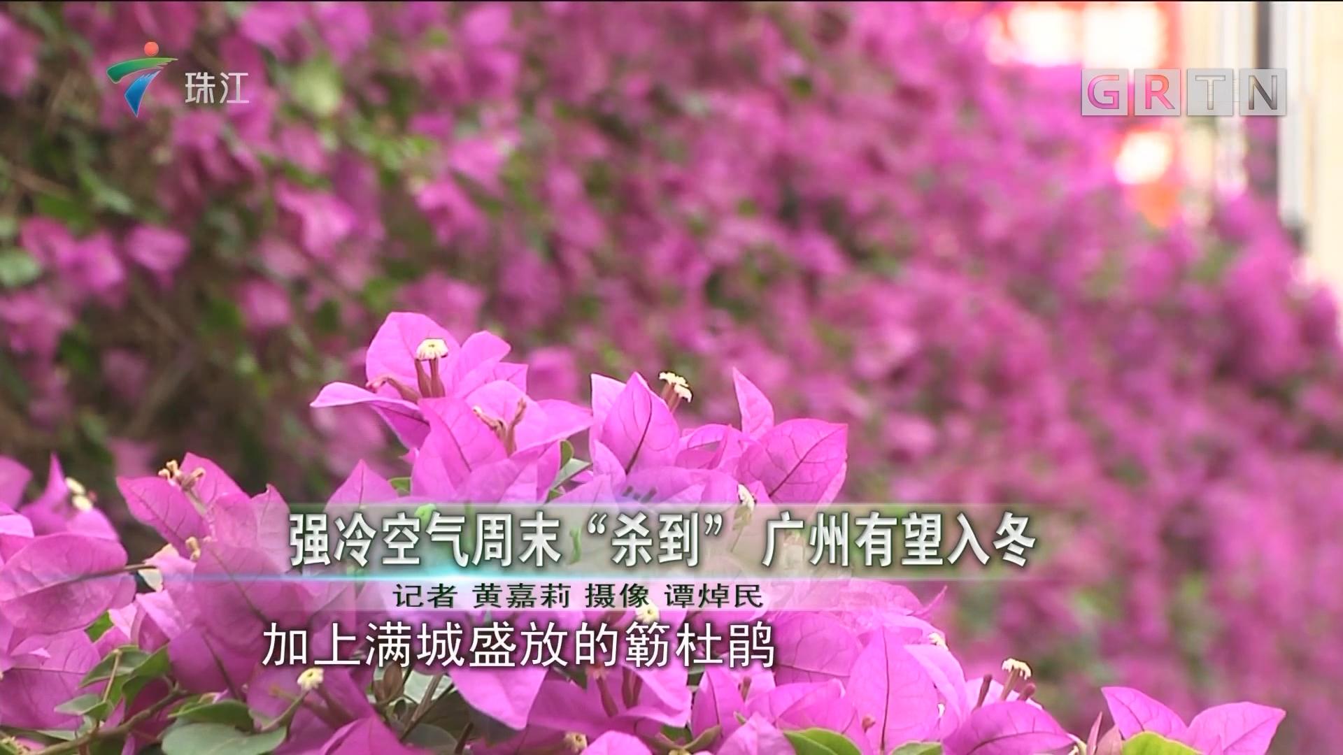 """强冷空气周末""""杀到"""" 广州有望入冬"""
