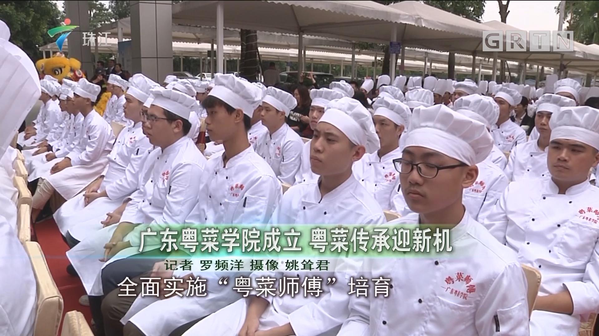 广东粤菜学院成立 粤菜传承迎新机
