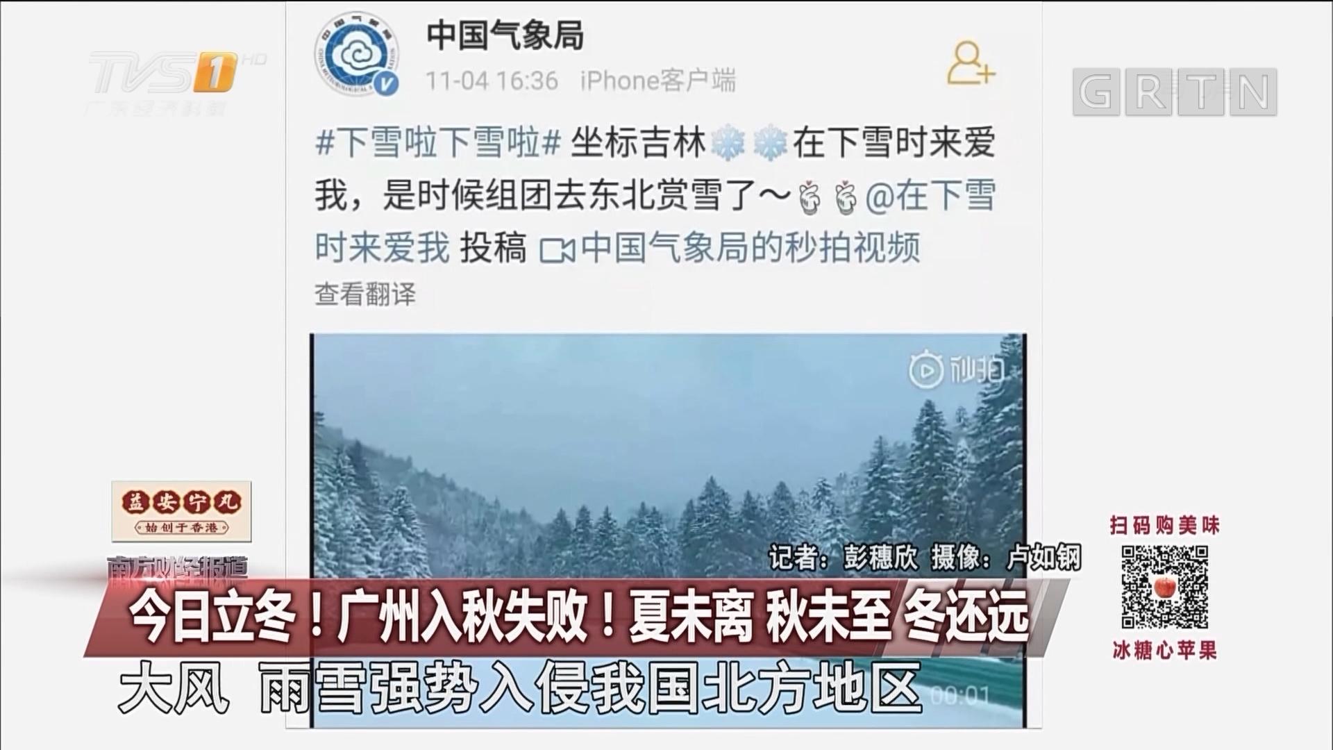 今日立冬!广州入秋失败!夏未离 秋未至 冬还远