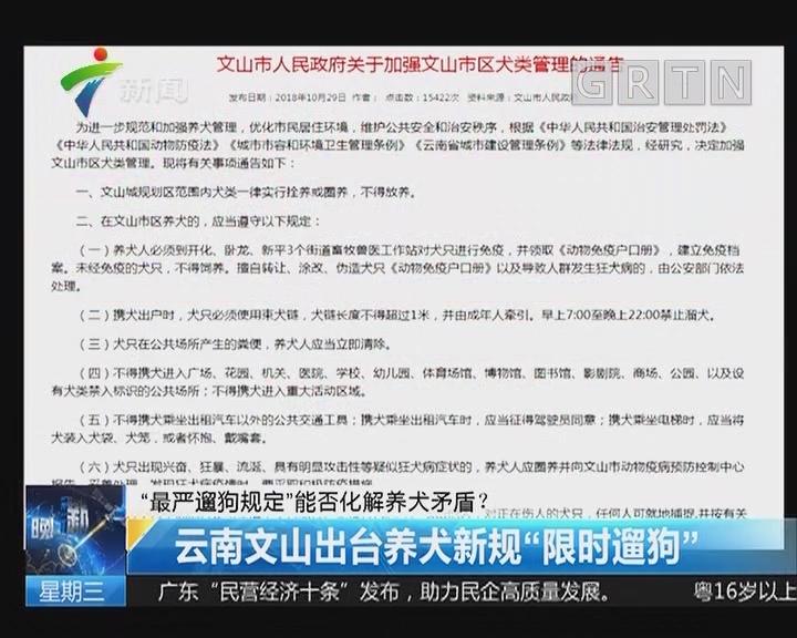"""""""最严遛狗规定""""能否化解养犬矛盾? 云南文山出台养犬新规""""限时遛狗"""""""