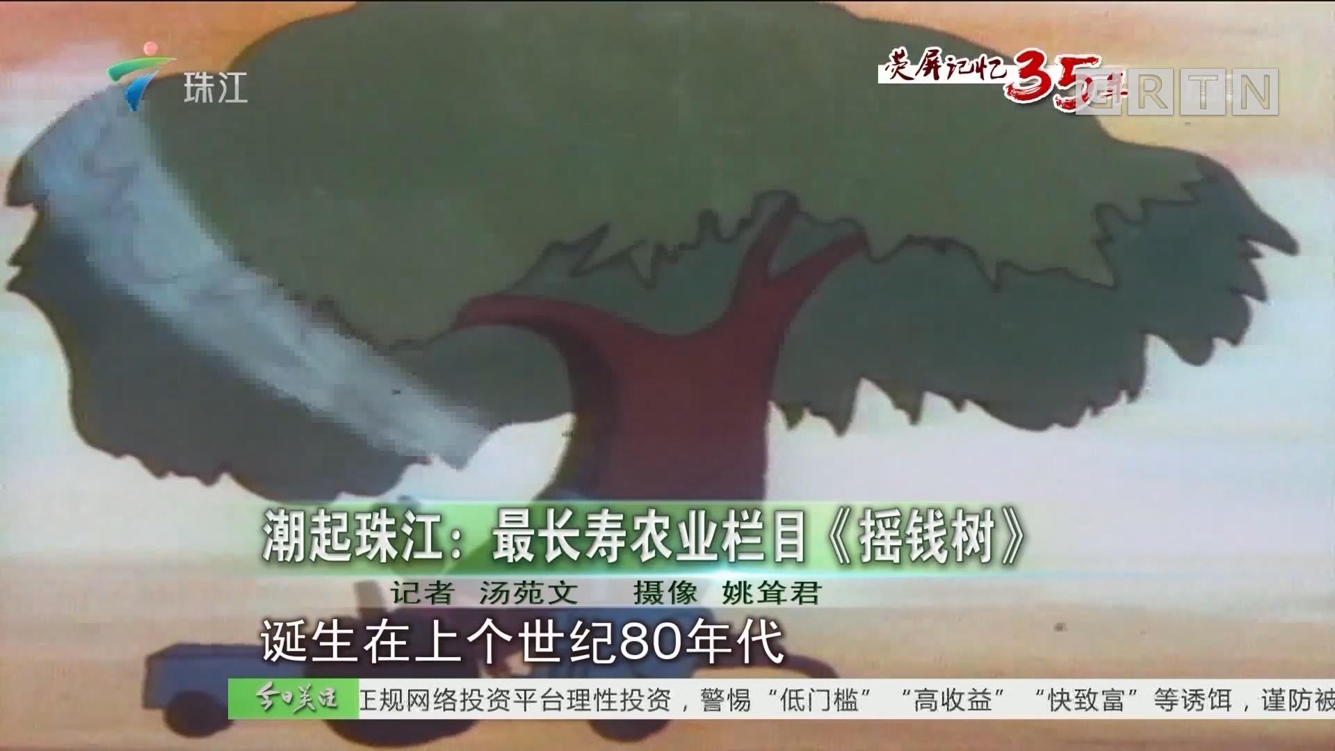 潮起珠江:最长寿农业栏目《摇钱树》