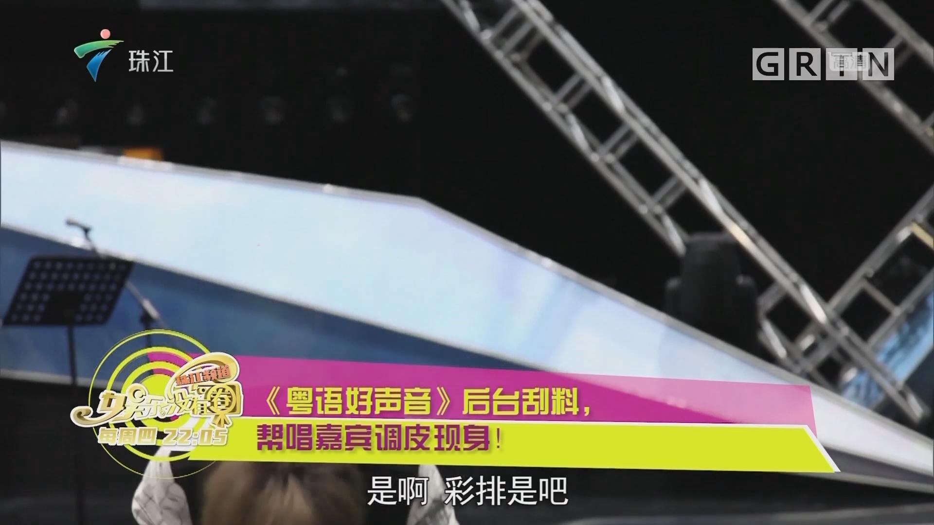 《粤语好声音》后台刮料,帮唱嘉宾调皮现身!