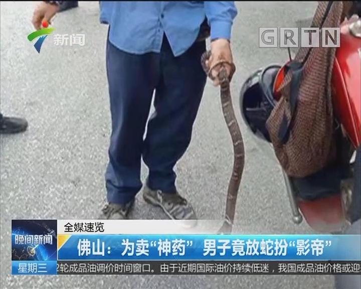 """佛山:为卖""""神药"""" 男子竟放蛇扮""""影帝"""""""