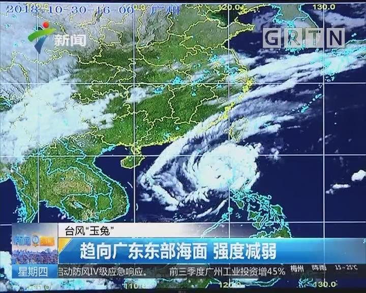 """台风""""玉兔"""":趋向广东东部海面 强度减弱"""