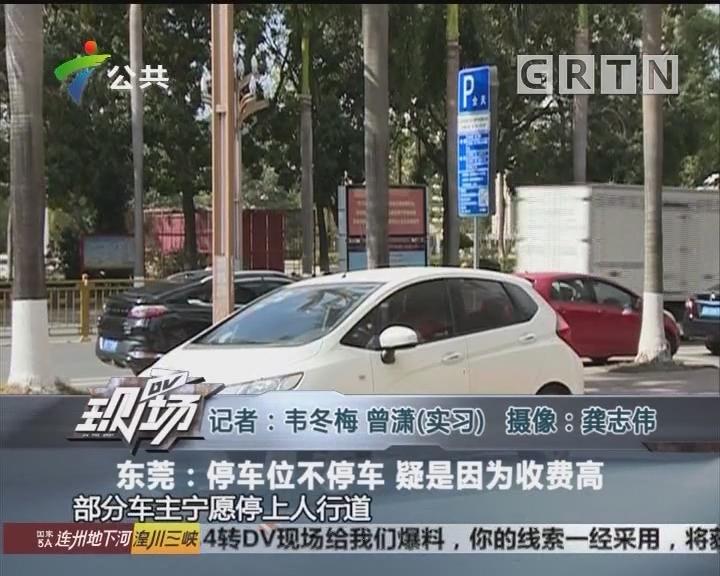 东莞:停车位不停车 疑是因为收费高