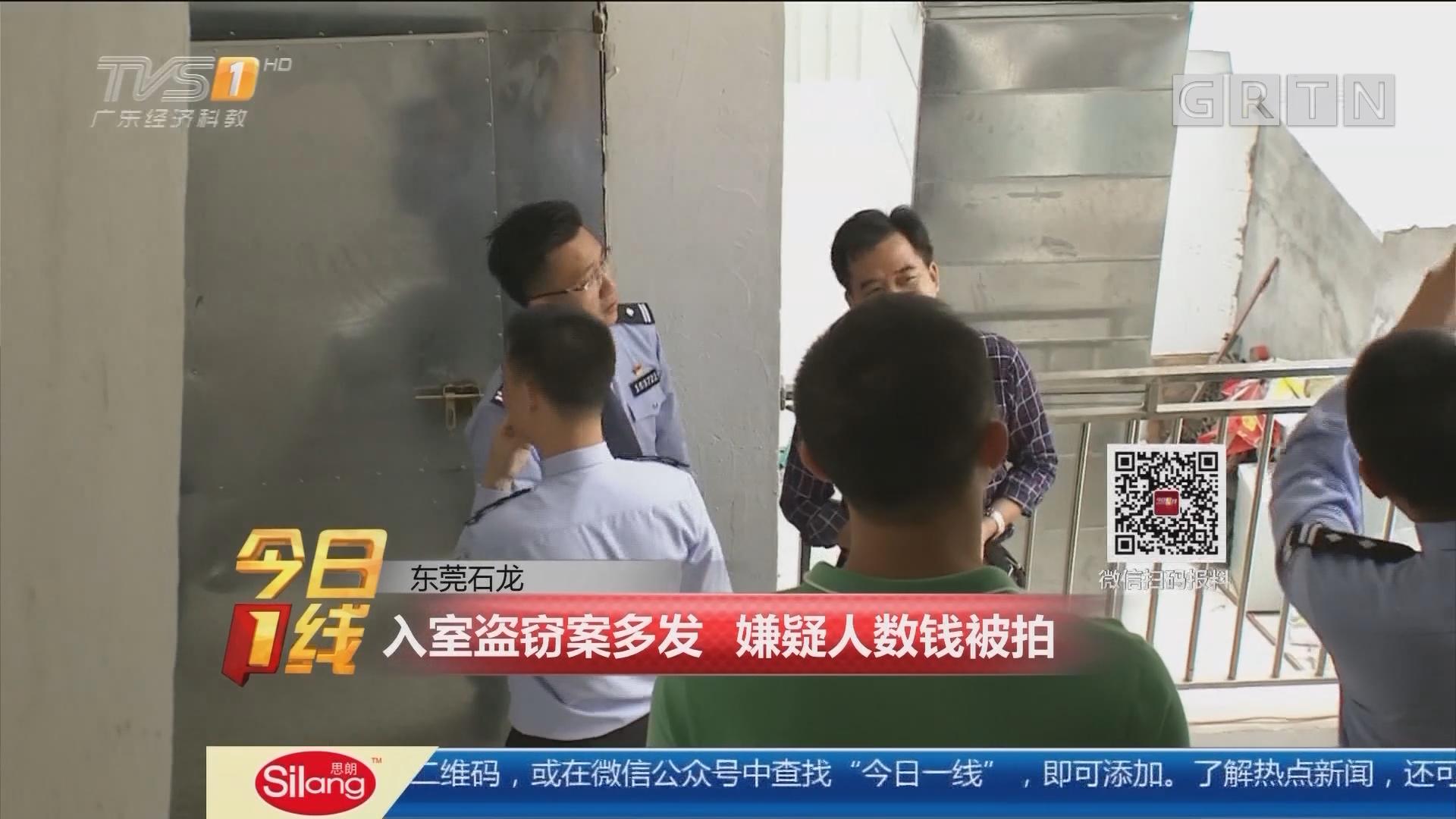 东莞石龙:入室盗窃案多发 嫌疑人数钱被拍