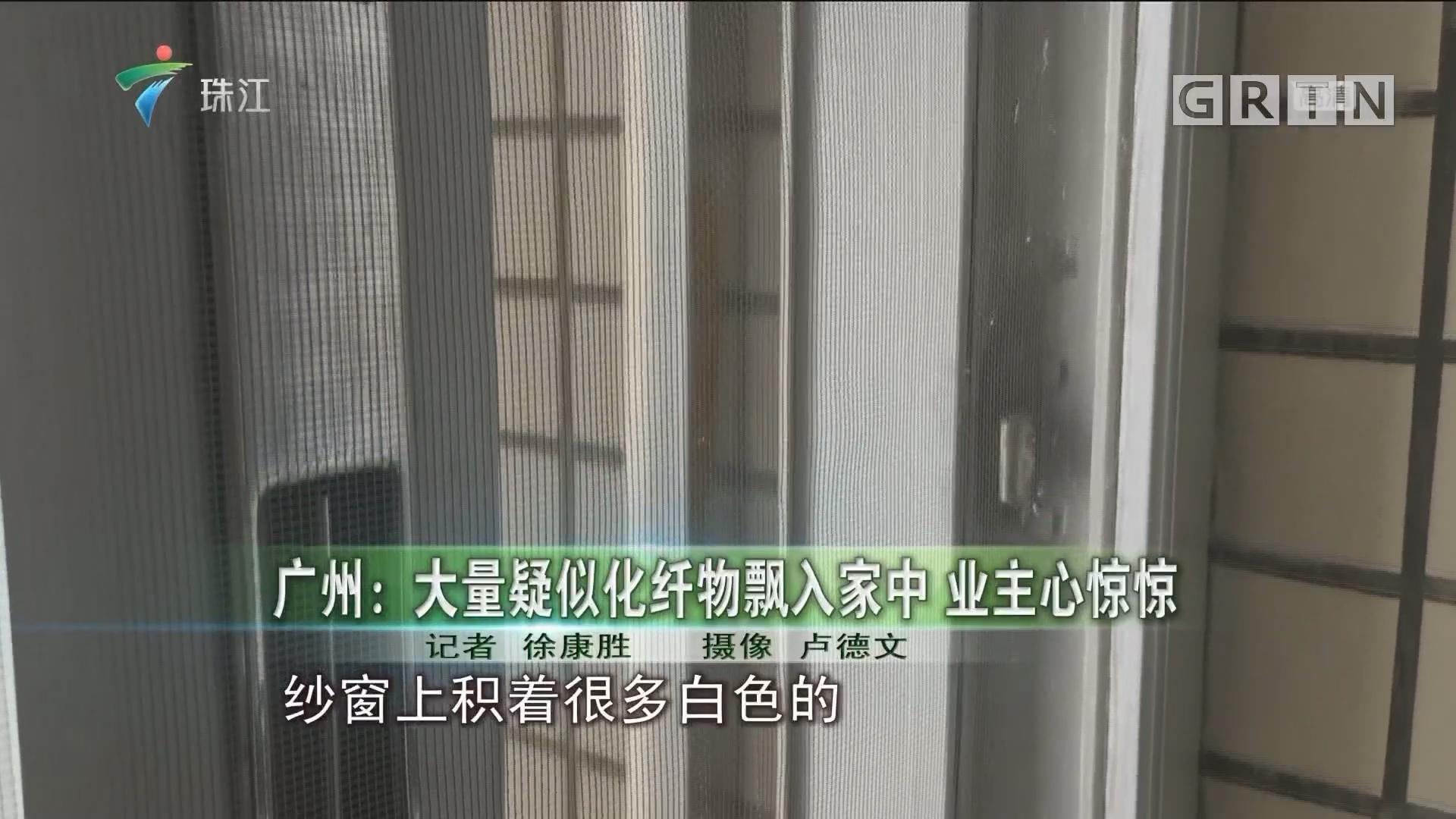 广州:大量疑似化纤物飘入家中 业主心惊惊