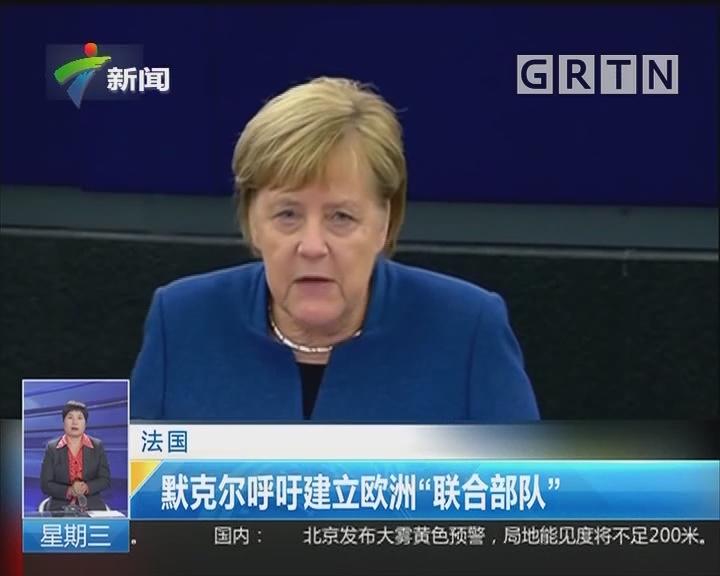 """法国:默克尔呼吁建立欧洲""""联合部队"""""""