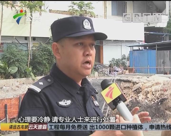 江门:工地挖出爆炸物 警方及时排爆解危