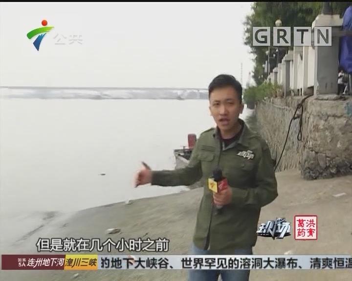 广州:三人渡口落水 救援部门紧急搜寻