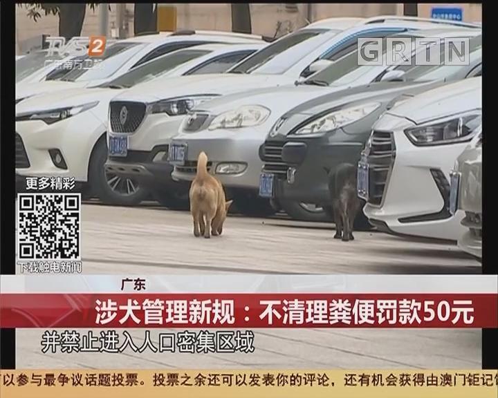 广东 涉犬管理新规:不清理粪便罚款50元