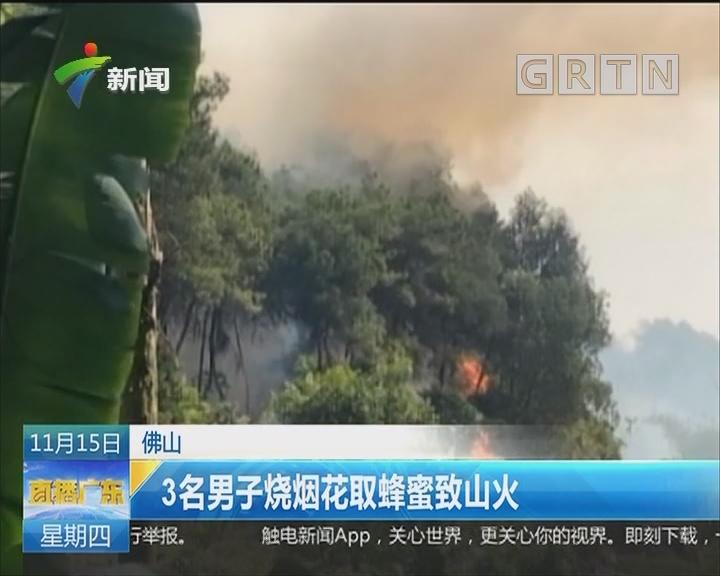 佛山:3名男子烧烟花取蜂蜜致山火