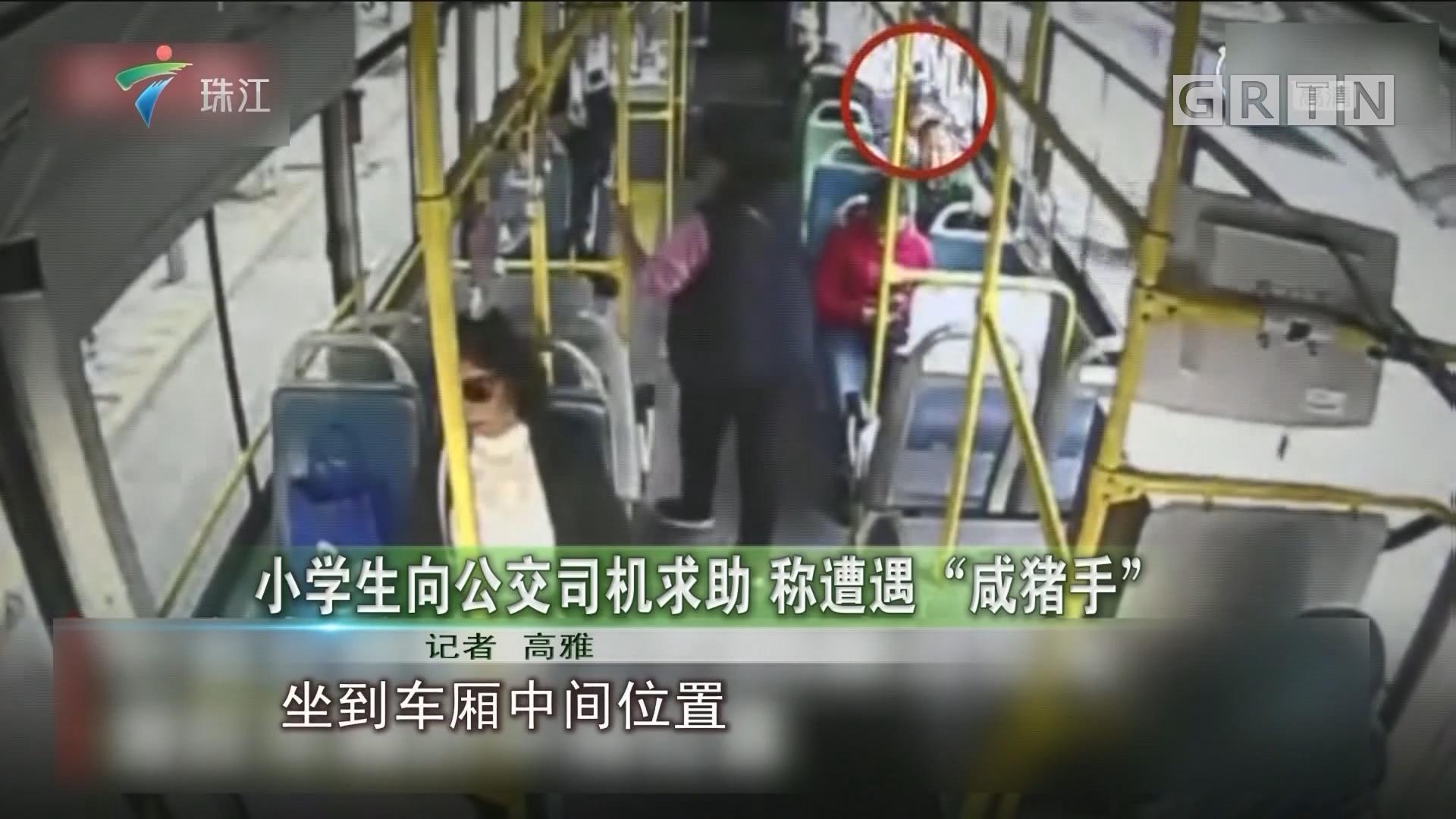 """小学生向公交司机求助 称遭遇""""咸猪手"""""""