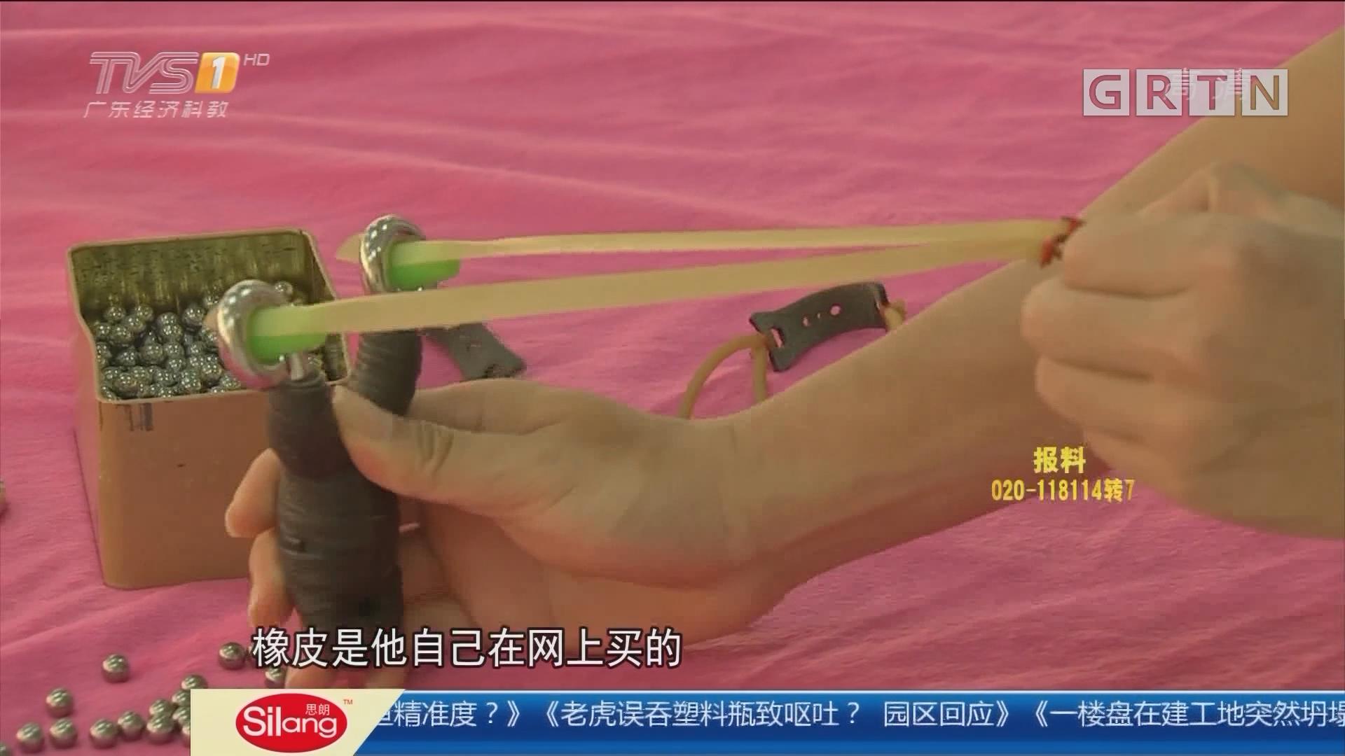"""佛山顺德:""""钢珠射手""""落网 只为苦练打鱼精准度?"""