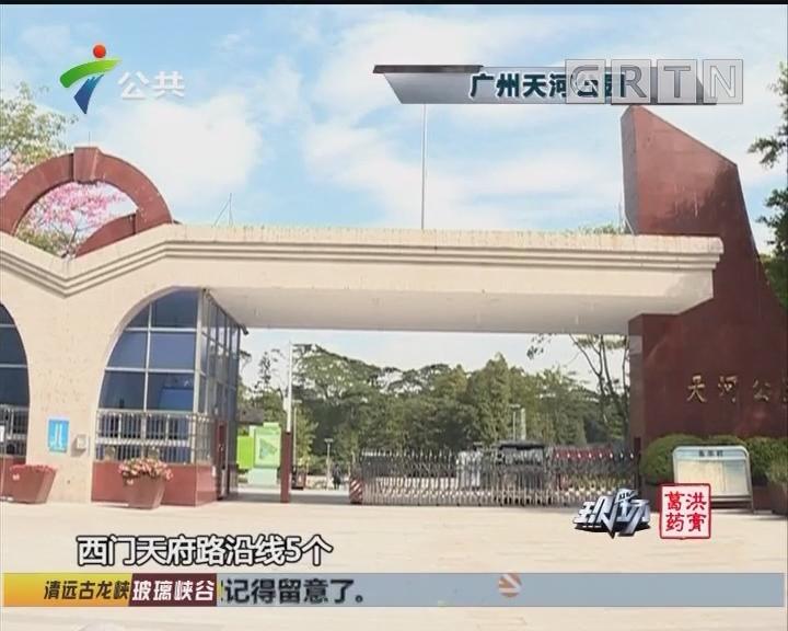 拆围透绿后 广州天河公园靓出新境界