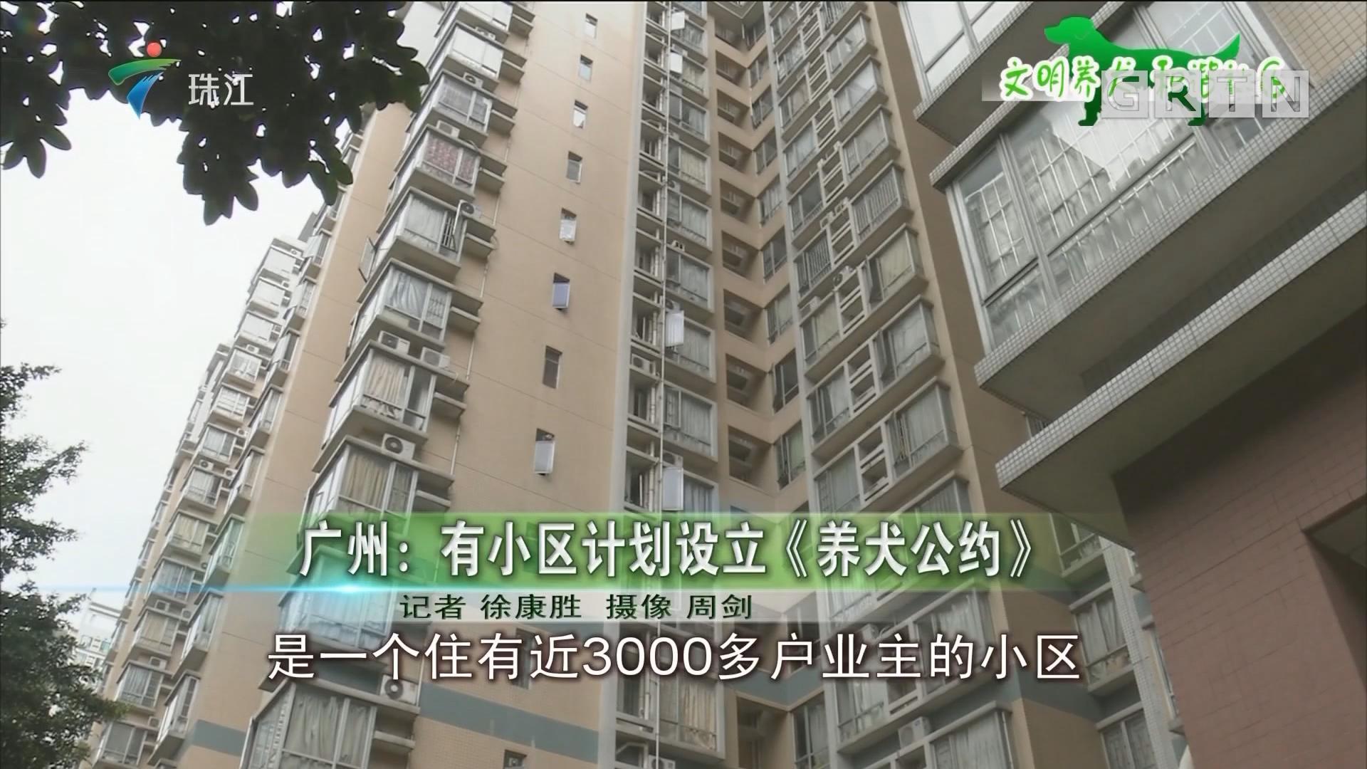 广州:有小区计划设立《养犬公约》