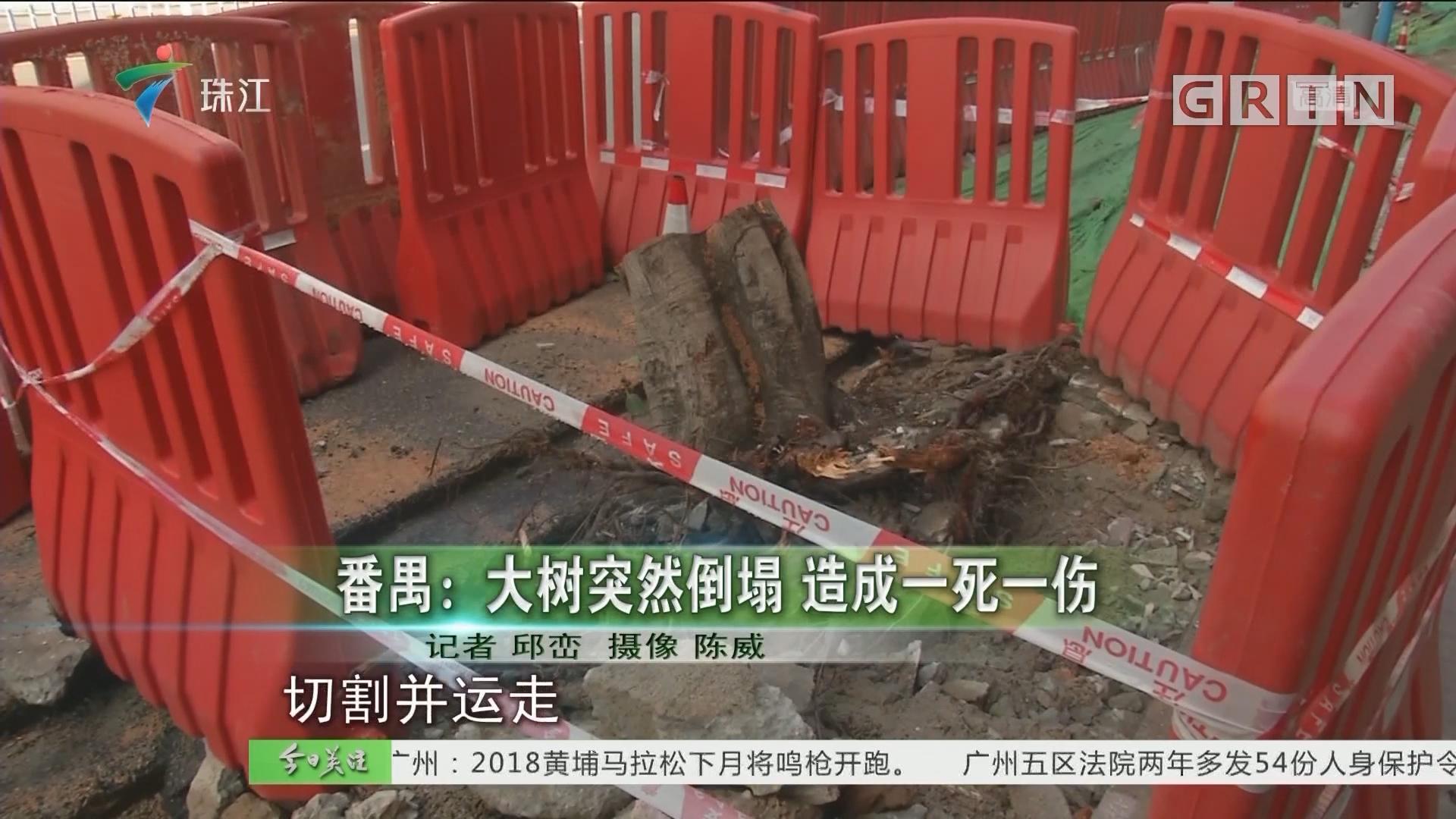 番禺:大树突然倒塌 造成一死一伤