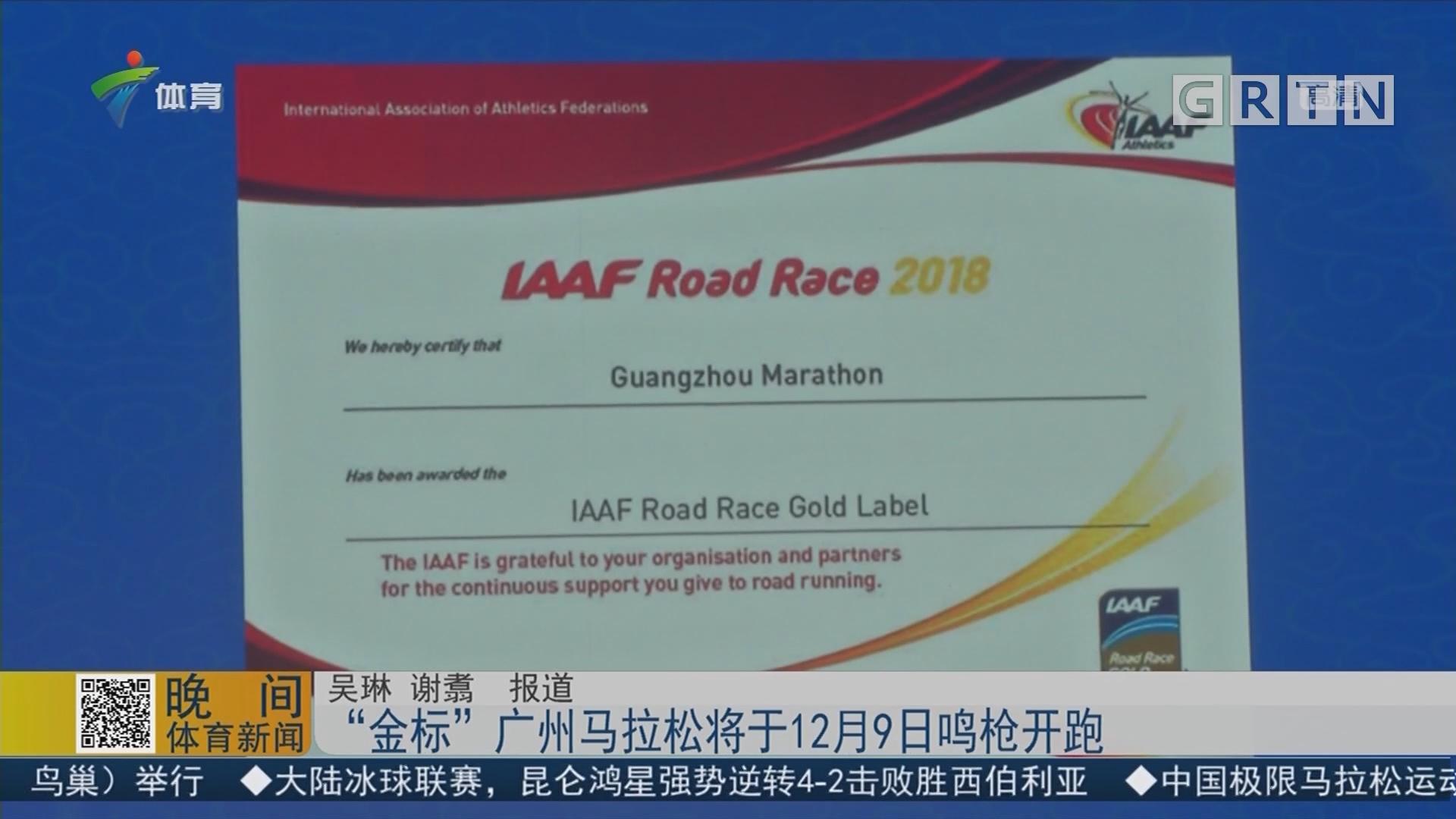"""""""金标""""广州马拉松将于12月9日鸣枪开跑"""