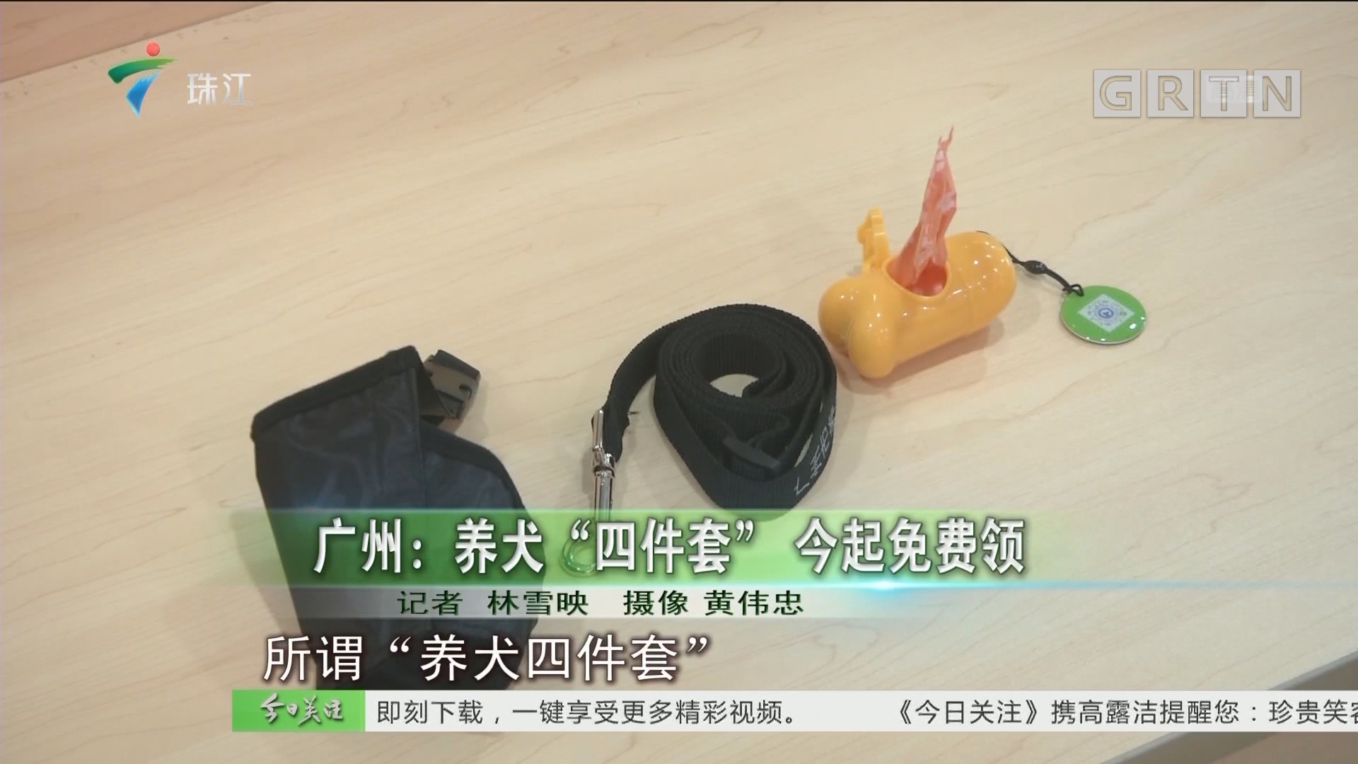 """广州:养犬""""四件套"""" 今起免费领"""