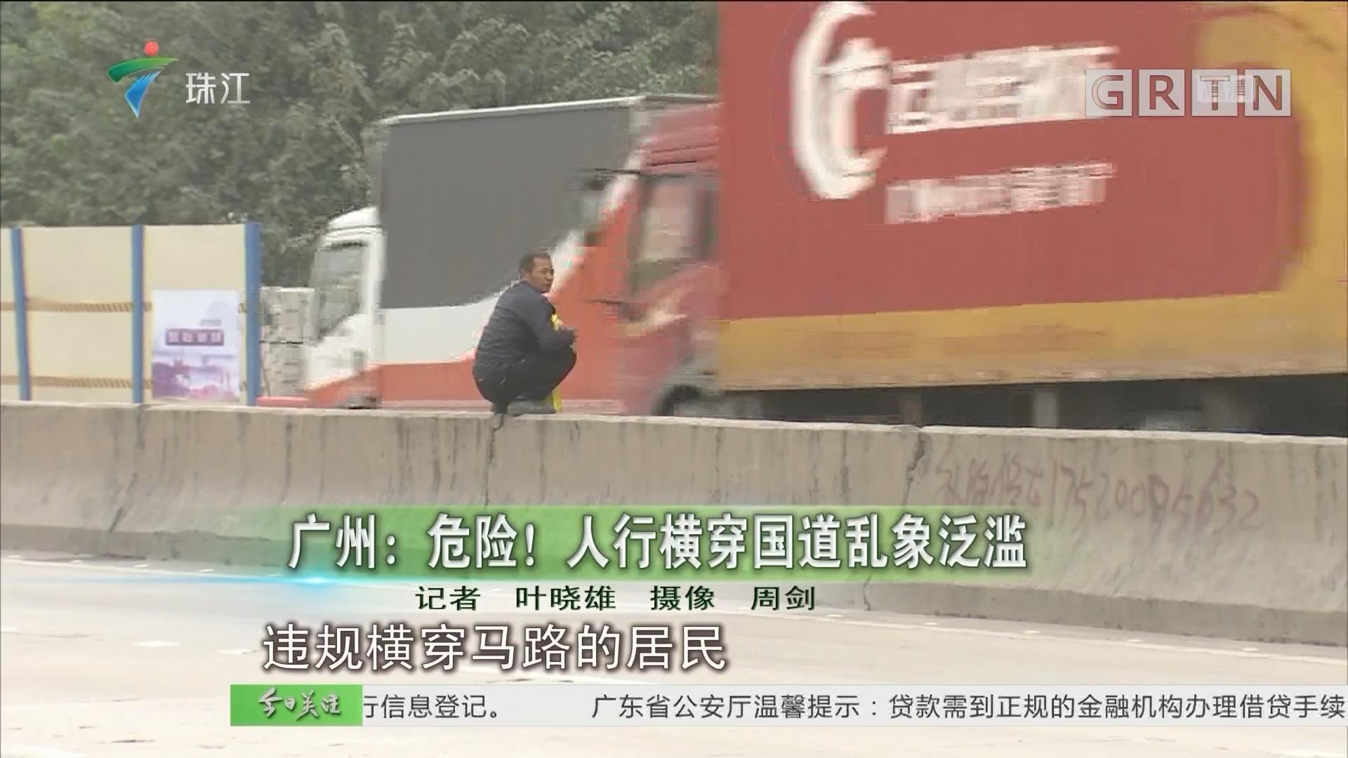 广州:危险!人行横穿国道乱象泛滥