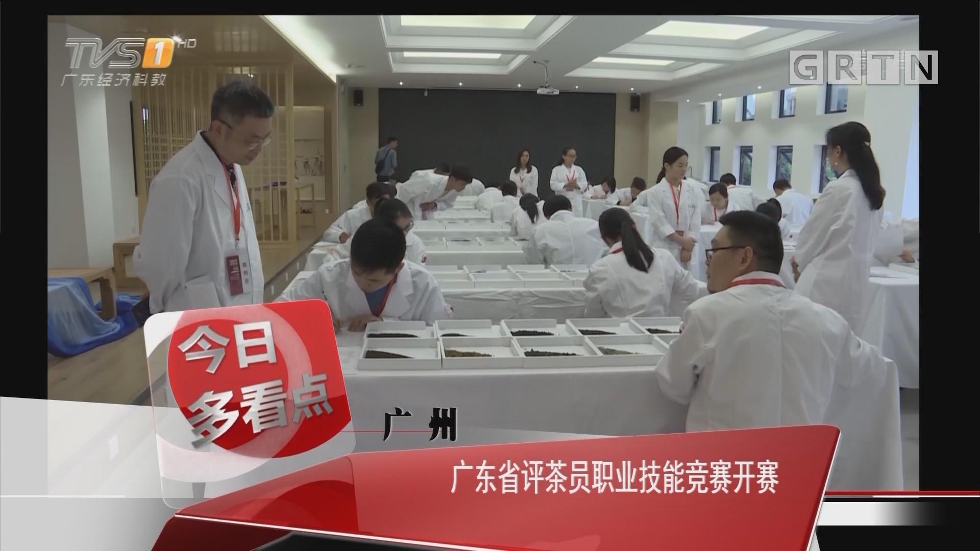 广州:广东省评茶员职业技能竞赛开赛